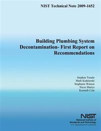 Building Plumbing System Decontamination - First Report on Recommendations