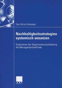 Nachhaltigkeitsstrategien Systemisch Umsetzen