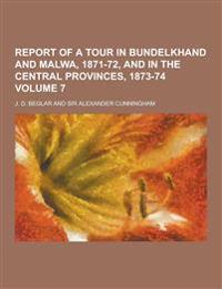 Report of a Tour in Bundelkhand and Malwa, 1871-72, and in the Central Provinces, 1873-74 Volume 7