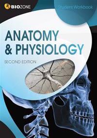 AnatomyPhysiology