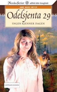 Ingen kjenner dagen - Anne Marie Meyer   Inprintwriters.org