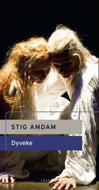 Dyveke - Stig Amdam pdf epub