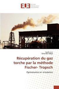 Recuperation Du Gaz Torche Par La Methode Fischer- Tropsch