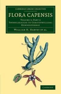 Flora Capensis 7 Volume Set in 10 Pieces Thymelaeaceae to Ceratophylleae; Gymnospermae: Volume 5 Flora Capensis