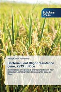 Bacterial Leaf Blight Resistance Gene, Xa33 in Rice