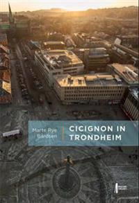 Cicignon in Trondheim