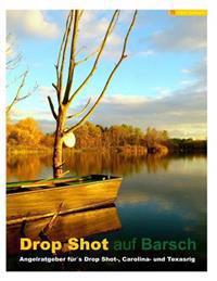 Drop Shot Auf Barsch: Angelratgeber Furs Drop Shot-, Carolina- Und Texasrig