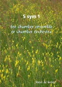 S Sym 1 for Chamber Ensemble or Chamber Orchestra