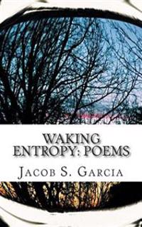 Waking Entropy: Poems