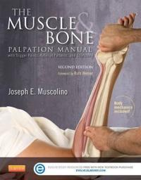 The Muscle and Bone Palpation Manual With Trigger Points, Referral Patterns and Stretching + Evolve