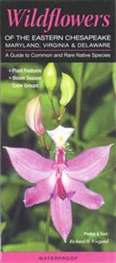 Wildflowers of the Eastern Chesapeake: Maryland, Virginia & Delaware: A Guide to Common & Rare Native Species