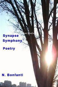 Symphony Synopsis