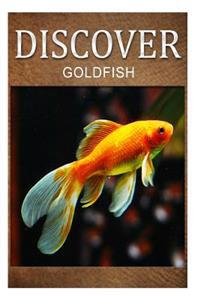 Gold Fish - Discover: Early Reader's Wildlife Photography Book