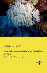 Untersuchungen Zur Physiologischen Morphologie Der Tiere
