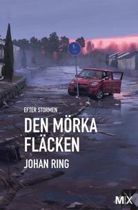 Den mörka fläcken : Efter stormen