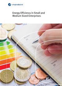 Energy Efficiency in Small and Medium Sized Enterprises