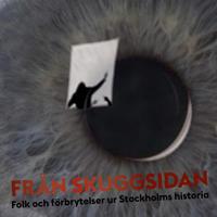 Från skuggsidan : folk och förbrytelser ur Stockholms historia