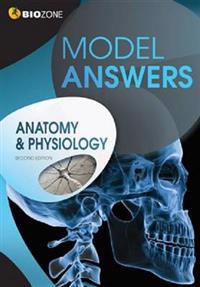 AnatomyPhysiology Model Answers