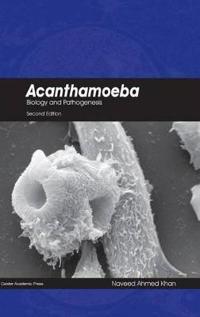 Acanthamoeba