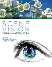 Scene Vision