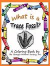 What Is a Trace Fossil?: A Coloring Book by the Georgia Mineral Society, Inc.