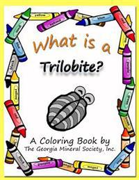 What Is a Trilobite?: A Coloring Book by the Georgia Mineral Society, Inc.
