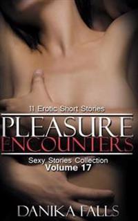 Pleasure Encounters: 11 Erotic Short Stories