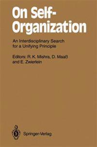 On Self-Organization