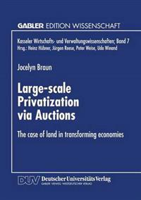 Large-Scale Privatization Via Auctions