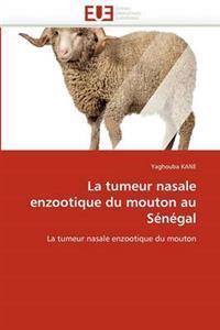 La Tumeur Nasale Enzootique Du Mouton Au S�n�gal
