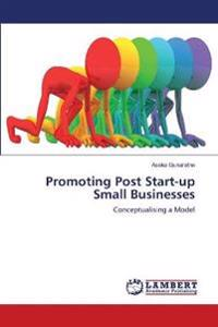 Promoting Post Start-Up Small Businesses