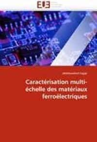 Caract�risation Multi-�chelle Des Mat�riaux Ferro�lectriques