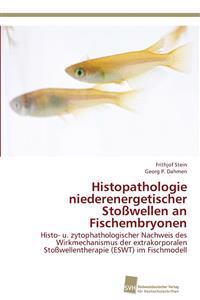 Histopathologie Niederenergetischer Stosswellen an Fischembryonen