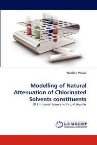 Modelling of Natural Attenuation of Chlorinated Solvents Constituents