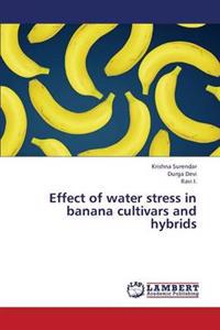Effect of Water Stress in Banana Cultivars and Hybrids