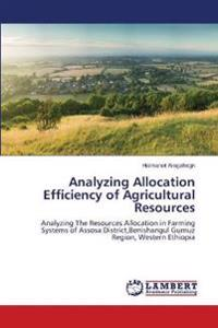 Analyzing Allocation Efficiency of Agricultural Resources