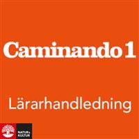 Caminando 1 Lärarhandledning Webb, fjärde upplagan