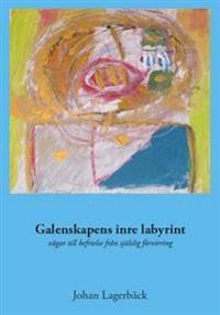 Galenskapens inre labyrint : vägar till befrielse från själslig förvirring