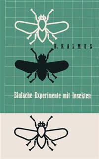 Einfache Experimente Mit Insekten