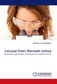 Laccase from Stereum Ostrea