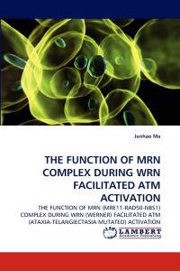 The Function of Mrn Complex During Wrn Facilitated ATM Activation