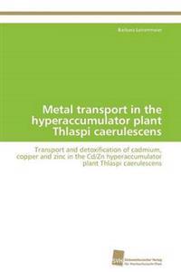 Metal Transport in the Hyperaccumulator Plant Thlaspi Caerulescens