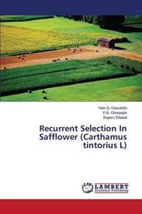 Recurrent Selection in Safflower (Carthamus Tintorius L)