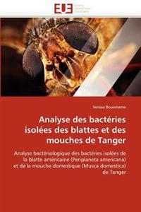 Analyse Des Bact�ries Isol�es Des Blattes Et Des Mouches de Tanger