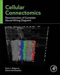 Cellular Connectomics