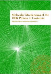 Molecular mechanisms of the DEK protein in leukemia