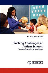 Teaching Challenges at Autism Schools