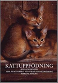 Kattuppfödning : avel och genetik