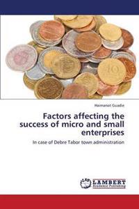 Factors Affecting the Success of Micro and Small Enterprises