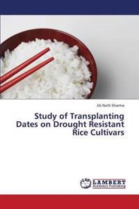 Study of Transplanting Dates on Drought Resistant Rice Cultivars